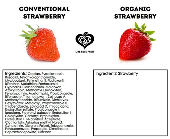 strawberry_graph